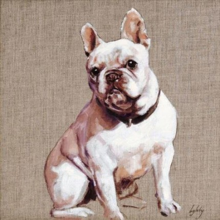 """French Bulldog"" Oil on canvas, 16 x 16 inches, Signed"