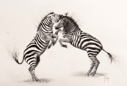 """Fighting Zebras"" Charcoal on paper, Signed & Framed - SOLD"