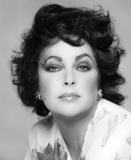 """Elizabeth Taylor, 1982"" Hollywood Women Portfolio, 20 x 24 inches, Individual Price: $1,250, Portfolio of ten portraits: $4,950"