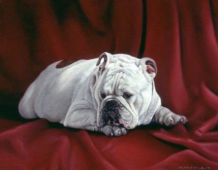 """Maximillian"" Oil on canvas, 24 x 28 inches, Signed"