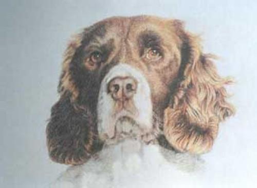 """""""Bessie"""" Pastel on paper, 50 x 60 cm, Signed"""