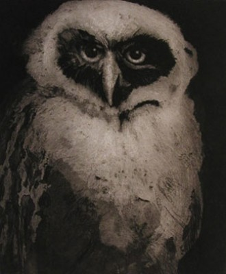 """""""Young Spectacled Owl"""" 2002, Etching/Aquatint, Edition 5/9, 20 x 16 inches, Signed & Numbered"""