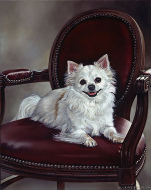 """Theo"" oil on canvas, 20 x 16 inches"