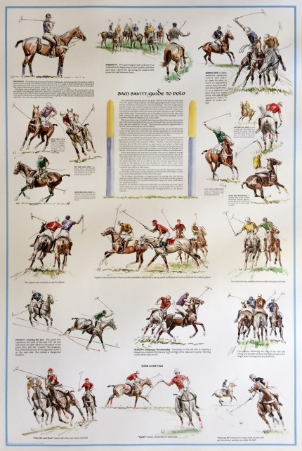"""Guide to Polo"" Poster, 36 x 24 inches"