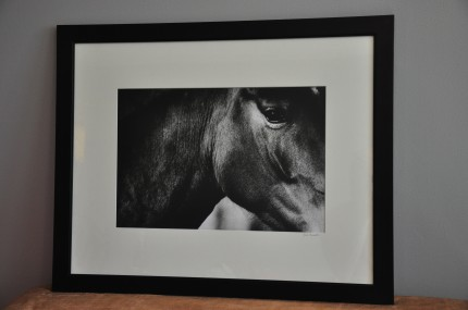 """D'Amore"" gelatin silver print, 31 x 25 inches matted and framed, signed"