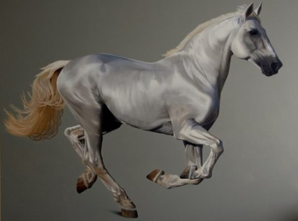 "White Horse, oil on canvas, 48"" x 60"""