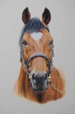 Chisholm Gallery Galvin Wendy Polo Art Sporting Art