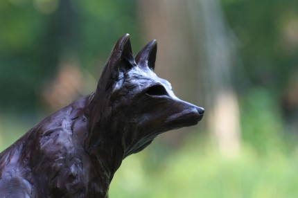 """The Fox"" (Detail) Bronze, 2 A/P, Edition of 15, 16 x 11 x 7 inches"