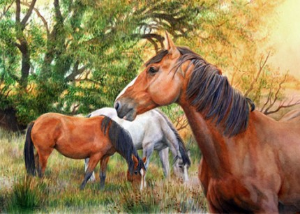 """New Zealand Horses"" Watercolour, 15 x 20 inches"