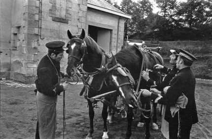 """France Carriage Horses, Grooms at the Pompadour, One of 24 National Stud Farms of France, photographed extensively in black and white and color. Vintage silver print 8x10"""" and any size digital print on request."""