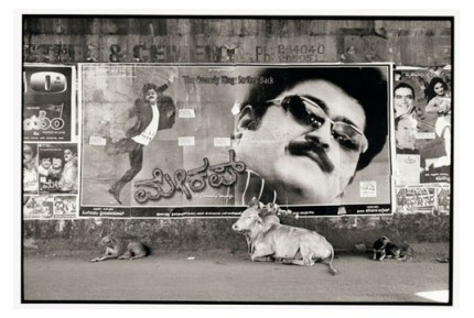 """Movie poster and bull, Hubli"" Gelatin silver print, Edition of 25, Paper size: 50 x 60 cms, Also available in 40 x 50 cms & 76 x 100 cms"