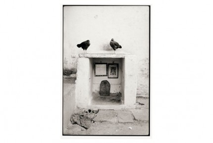 """Shrine and chickens"" Gelatin silver print, Edition of 25, Paper size: 50 x 60 cms, Also available in 40 x 50 cms & 76 x 100 cms"