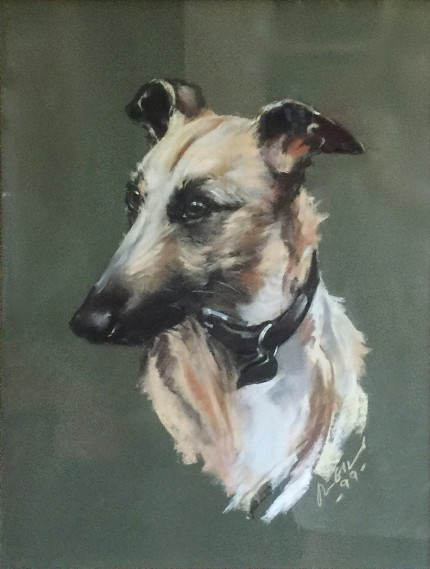 """Lurcher Portrait"" 1999, Pastel on paper, 26 x 18 inches, 32 x 24 inches, Signed & Dated lower right"