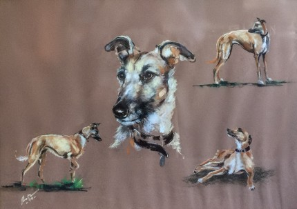"""Lurcher Studies"" 1999, Oil pastel on paper, 18 x 26 inches, Signed & Dated lower left"