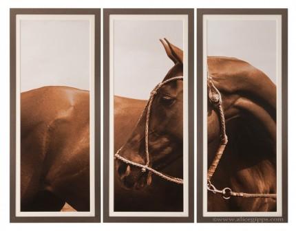 """Nicotina"" Triptych, Sepia, framed"