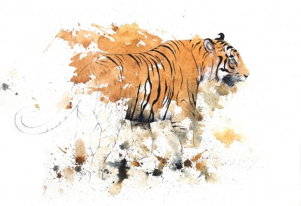 """Tiger IV"" Coffee & Ink, Signed"