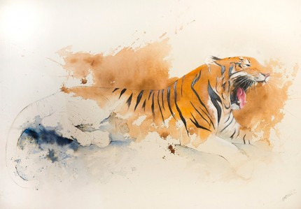 """Tiger VI"" Coffee & Ink, Signed"