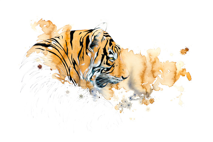 """Tiger I"" Coffee & Ink, Signed"