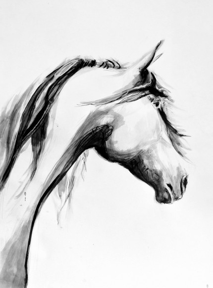 """Grace"" Sumi ink & Charcoal, 20 x 16 inches, Signed"