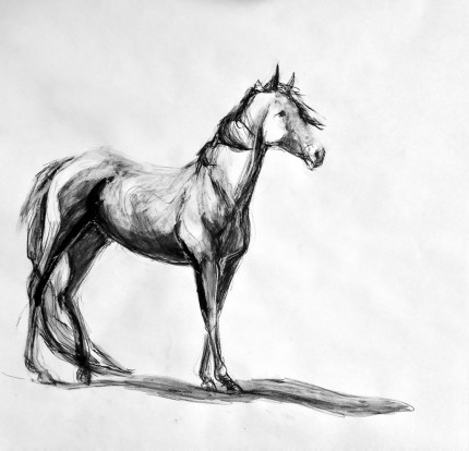 """Thoroughbred"" Sumi ink & Charcoal, 16 x 20 inches, Signed"