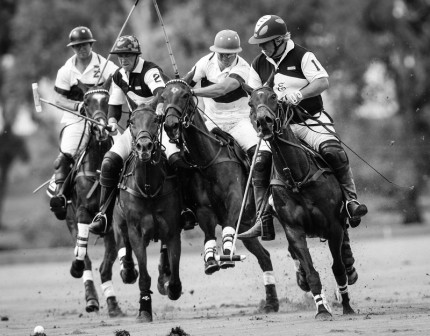 """Polo Limited Edition 012"" Fine art glossy photo paper, Edition of 10, 15.66 x 20 inches, Paper: 19.66 x 24 inches"