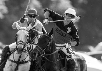 """Polo Limited Edition 013"" Fine art glossy photo paper, Edition of 10, 14 x 20 inches, Paper: 18 x 24 inches"
