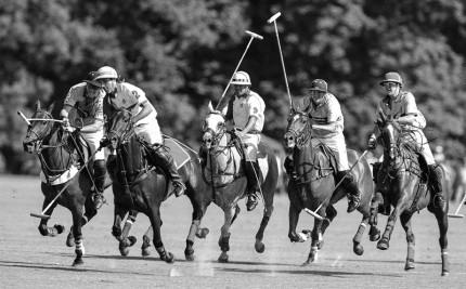"""Polo Limited Edition 032"" Fine art glossy photo paper, Edition of 10, 13.47 x 20 inches, Paper: 17.47 x 24 inches"