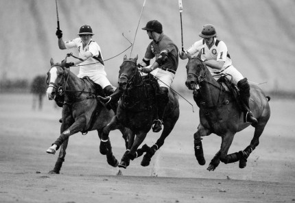 """Polo Limited Edition 044"" Fine art glossy photo paper, Edition of 10, 13.79 x 20 inches, Paper: 17.79 x 24 inches"