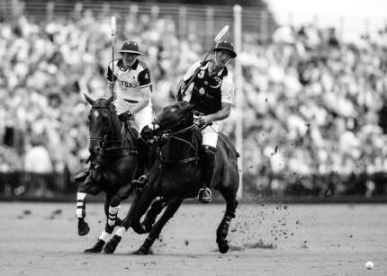 """Polo Limited Edition 050"" Fine art glossy photo paper, Edition of 10, 14.32 x 20 inches, Paper: 18.32 x 24 inches"