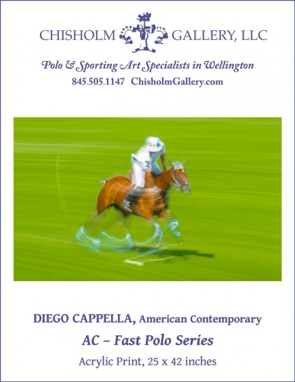 """Diego Cappella """"AC - Fast Polo Series"""""""