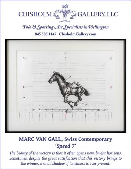 """Marc van Gall """"Speed 7"""""""