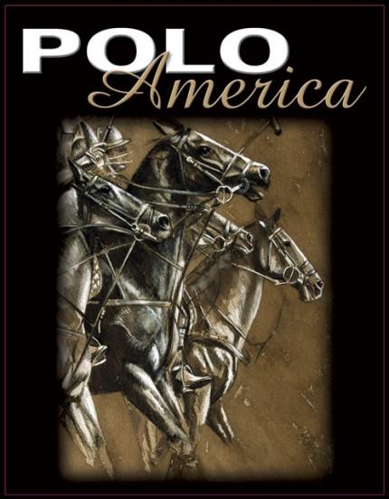 Polo America Cover