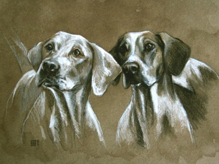 """""""Two Hounds"""" Ink and pastel on paper, 12 x 16 inches, Signed"""
