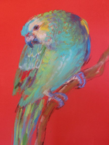 """""""Green Parrot"""" pastel on paper, 26 x 22 inches"""