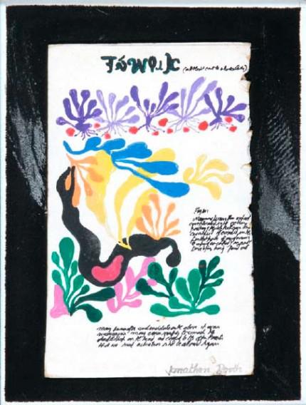 Matisse Cryptic