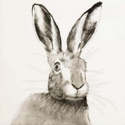 """""""Hare"""" Etching & Aquatint, Edition of 25, 45 x 45 cm, Signed"""