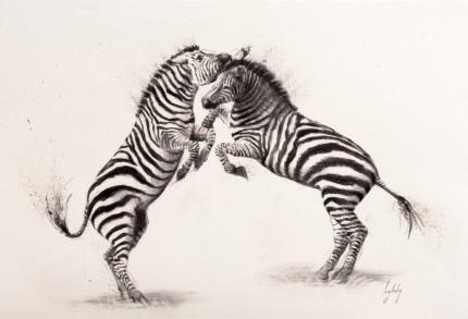 """""""Fighting Zebras"""" Charcoal on paper, Signed & Framed - SOLD"""