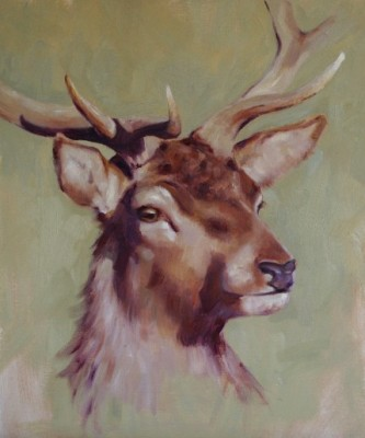 """""""Stag Head Portrait"""" Oil on canvas, 22 x 18 inches, Signed"""