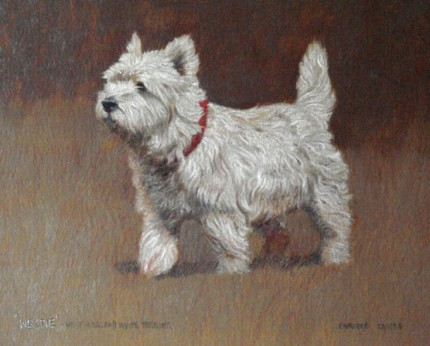"""""""Westie - West Highland White Terrier"""" Oil on paper, 9.5 x 11 inches, Signed"""