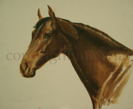 """Portrait of a Bay Thoroughbred"" Oil on canvas/board, 19.5 x 24 inches, Not signed"