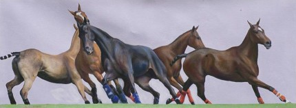 """String 35"" 2009, Oil on wood panel, 12 x 33 inches, Signed"