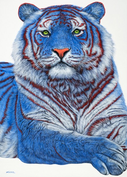 """Siberian Tiger in Blue"" Archival pigment print on watercolor paper, 48 x 34 inches, Edition of 24, Signed and numbered, Embossed with studio seal of Certificate of Authenticity"