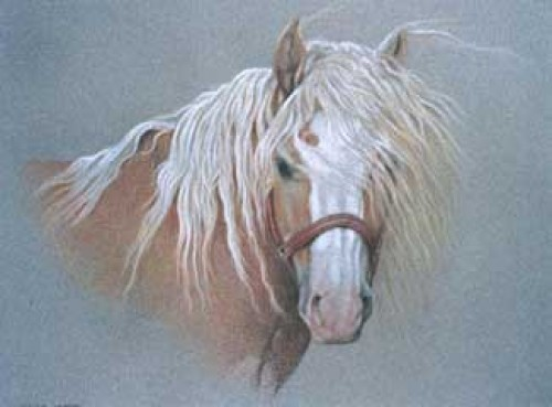 """""""Haflinger"""" Pastel on paper, 50 x 60 cm, Signed"""