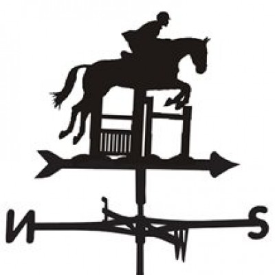 Silhouetted Jumping Weathervane