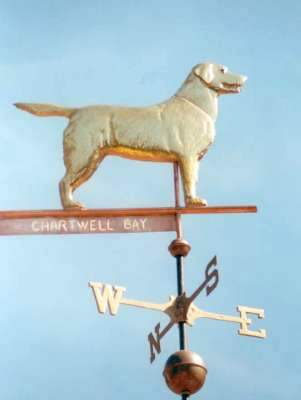 """Standing Labrador Retriever Weathervane"" This copper Labrador Retriever Dog weathervane features glass eyes, gold leafed patterns and distinctive tooling which gives the fur a realistic texture on the body.   Customers can provide photographs of their special canine pets for a customized  weather vane depicting  their favorite dog.  Glass eye color can be selected to accommodate a  variety of dog eye colors.  Personalized dog weathervanes can feature gold-leafing to bring out your pet's distinctive markings, as well as dog collars bearing your dog's name."