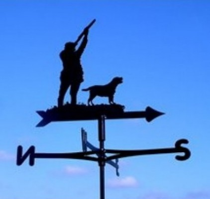 Silhouetted Shooting Cottage Weathervane