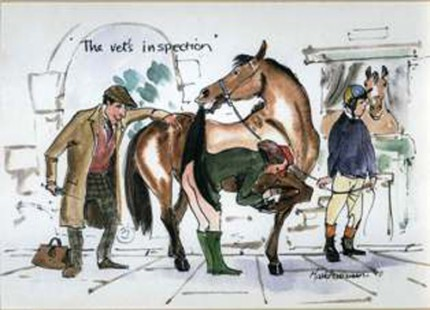 """""""The Vet's Inspection"""" A humourous swipe at the Equestrian world. MH001"""