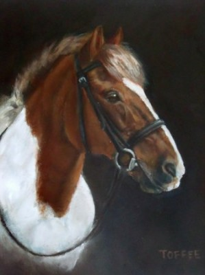 Toffee, Oil on Canvas, 18 x 14 inches