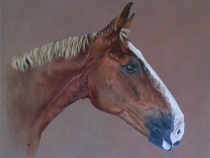 Jay Jay, acrylic on canvas