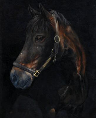 Ollie, arcylic on canvas